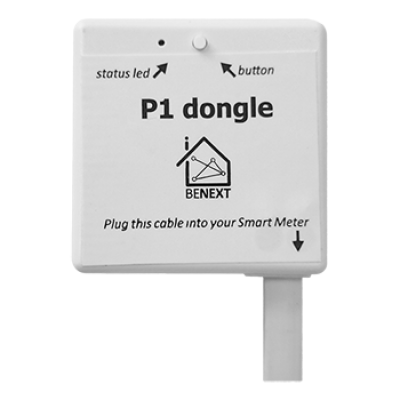 P1 Dongle